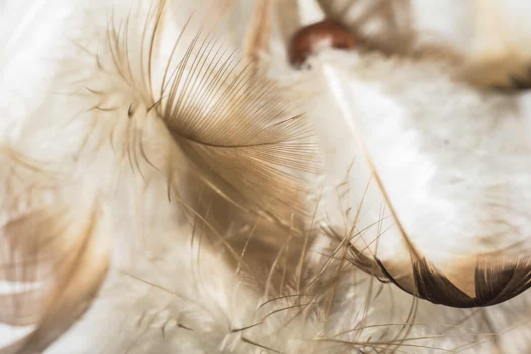 tips for understanding angel numbers