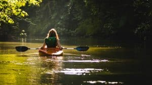 learn why kayaking is so popular